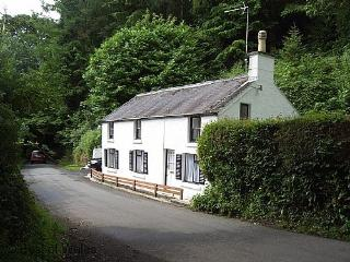 500 yards from Amroth Beach, Pembrokeshire - 23949