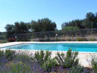 mediterranean garden surrounding the beautiful enclosed swimming pool