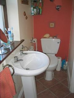 Downstairs Bathroom (across from Single Bedroom) with electric shower