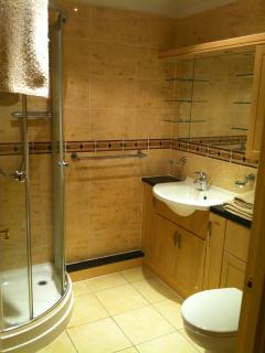 Stylish en-suite shower room