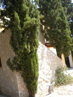 The stony staircase between cypresses