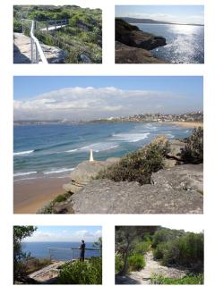 Great Cliff Walk to Dee Why.