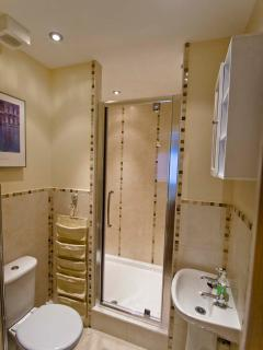 Master Bedroom En-Suite with super size shower