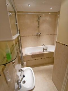 Bathroom with extra large bath and overhead shower