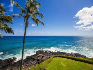Poipu Shores 304A Gorgeous, renovated oceanfront 2 bed/2 bath gem, heated Pool! Free car with stays 7 nts or more*