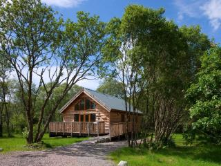 Silver Birch Log Cabin, with wood fired hot tub, Loch Awe