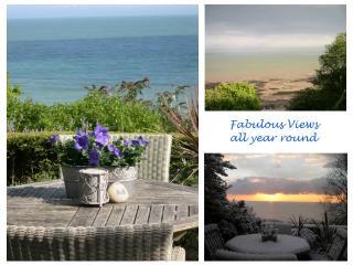 Patio views winter 2012 & summer 2013