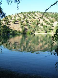 Zahara Lake pool camping.