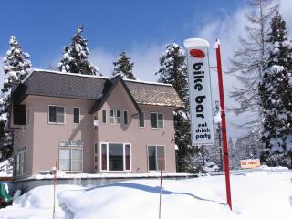 Sunny Falcon Ridge House sleeps 12!, Hakuba-mura