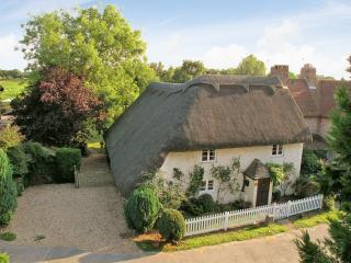 Thatch Cottage from the air