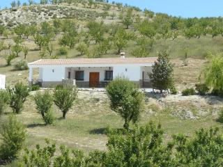 Villa set within Almond and Olive groves