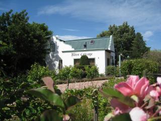 Rose Cottage driveway through rose garden.
