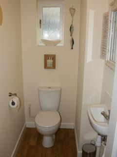 Downstairs WC/Cloak