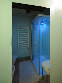 shower chromotherapy available only for rent 20 pax