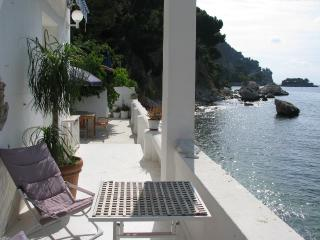 Magnificent French Riviera villa in Eze, features sea view, private swimming pool and garden, Èze