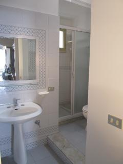 One of the two bathrooms, booth with shower.