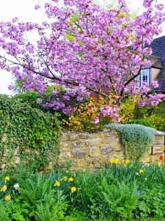 Spring time at Twine Cottage