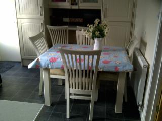 Dining Table Extends to fit 6.