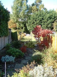 The garden at the rear