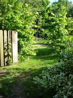 Another corner of the garden