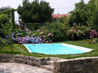 Casa Fiorentina - Apt. Barbara - Mezzegra