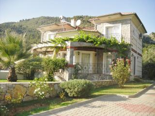 Ellynn Luxury Villa,Ideal for restricted mobility, Yesiluzumlu