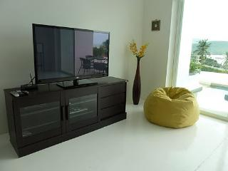 Sat TV DVDs provided