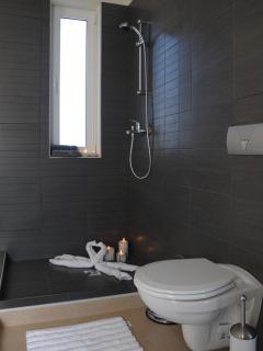 En  suite shower  in Master room