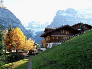 Rear View of Chalet looking towards Eiger