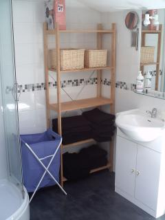 Family-sized shower room