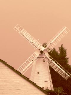 The Windmill (taken from Bed 3)