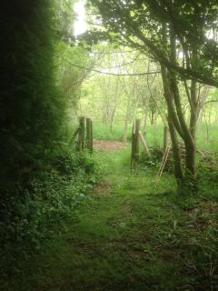 The gate leading to the woodland