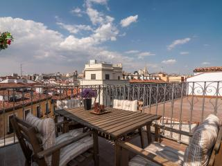 Penthouse with Terrace Plaza Mayor / Sol