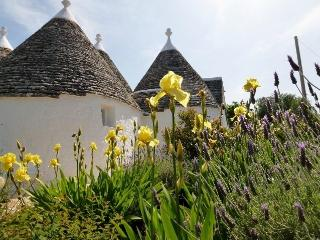 Trullo Azzurro - historic beauty in lovely setting, Locorotondo