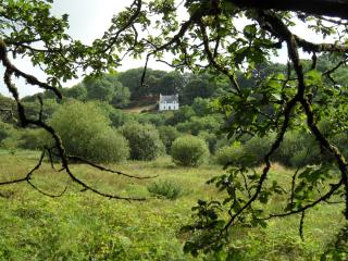 Farthings Hook Mill Cottage 4*, Pembrokeshire