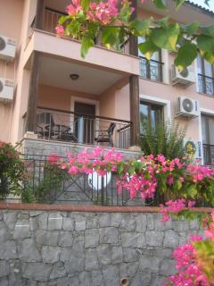 Palm 3 balcony