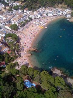 Aerial view from Tamariu