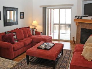Luxury Condo Minutes from Slopes (3b/2ba)!
