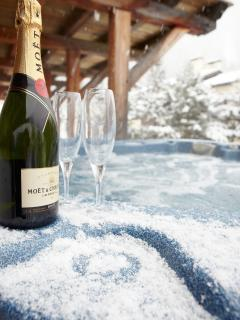 Relax in style and luxury with spectacular service from the Marmotte Mountain  chalet hosts.