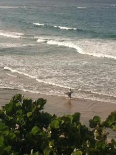 Waikiki waves