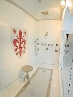 huge designer master shower