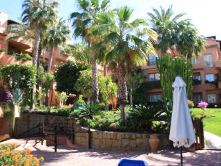 fab gardens lots of shade and free loungers and wi fi around the pool . Gym sauna