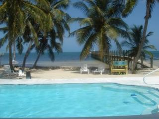 Beautiful Oceanfront, heated pool, free wifi, Islamorada