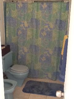 Bathroom in the Hallway