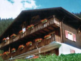 a typical Swiss chalet with beautiful montainview