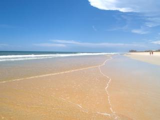 Sea Princess Castle, 10 Bedrooms, Ocean Front, Private Pool, Sleeps 14, Palm Coast