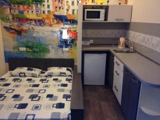 Room in mini-hotel with wifi, Járkov