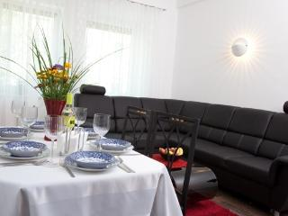 apartment centre-Prater-Danube 1, Vienna