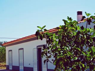 Country house near the beach in Albufeira, Algarve