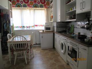 Cocina completa: vitro, horno, micoondas, lavavajillas, lavadora, nevera, congelador, tostadora...